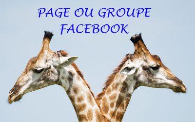 Groupe ou page Facebook : quelles différences ? Faut-il choisir entre les deux ?